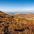 Kto nie dotknął Bukowego, jesienią, ni razu, ten nigdy nie czuł się jak w niebie. #Bieszczady #Bukowe #Berdo #jesień #góry