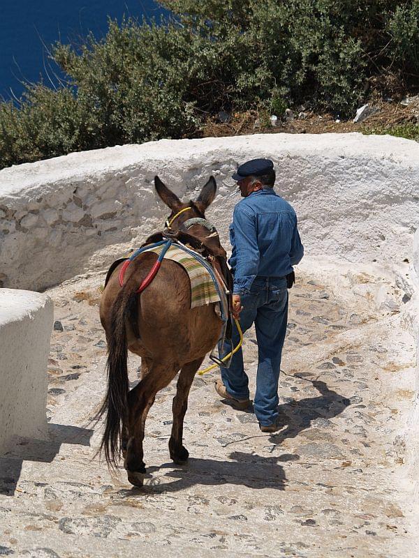 #ludzie#Grecja#zwierzęta