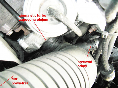 Zawartość Michal94 Strona 6 Audi A4 Klub Polska