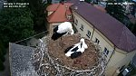 http://images78.fotosik.pl/791/f462c47d1bc1b4c0m.jpg