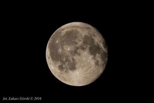 Łysy jeden dzień po pełni. #księżyc #pełnia